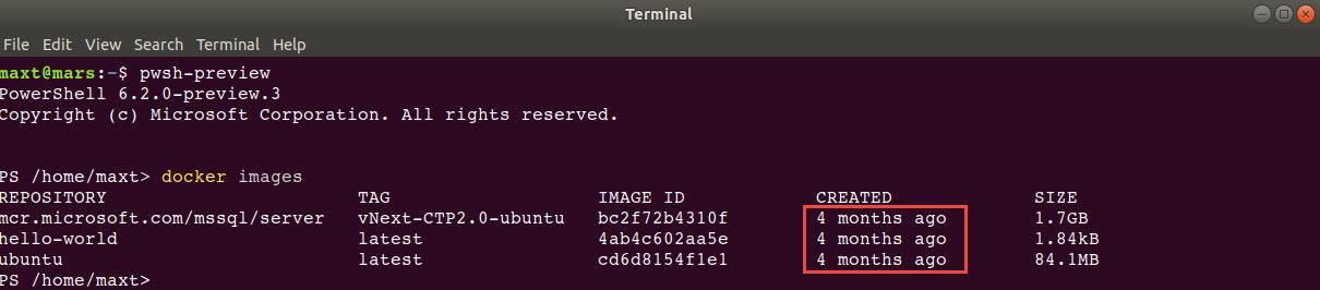 PowerShell Core Ubuntu 18 04 Using Docker Containers – Max Trinidad